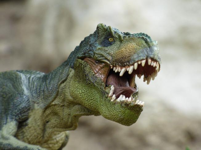 tyrannosaurus-855188_1280